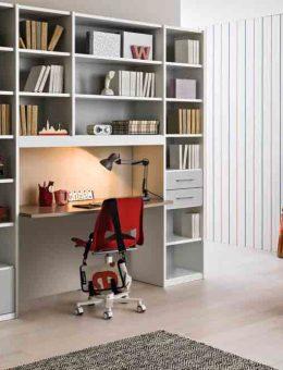 Μεγάλη-βιβλιοθηκη-και-γραφείο